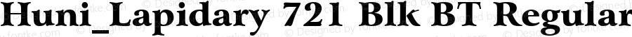 Huni_Lapidary 721 Blk BT Regular 1.0, Rev. 1.65  1997.06.07