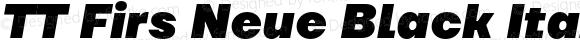 TT Firs Neue Black Italic