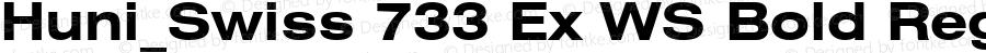 Huni_Swiss 733 Ex WS Bold Regular 1.0, Rev. 1.65  1997.06.10