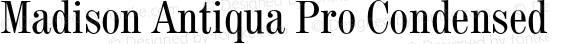 Madison Antiqua Pro Condensed