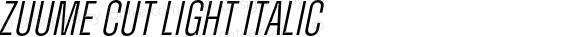 Zuume Cut Light Italic