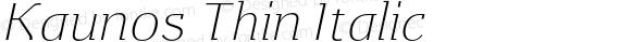 Kaunos Thin Italic