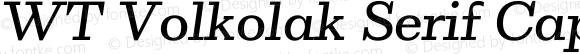 WT Volkolak Serif Caption Light Italic