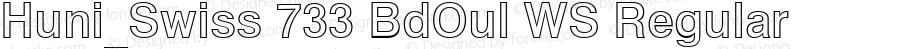 Huni_Swiss 733 BdOul WS Regular 1.0, Rev. 1.65  1997.06.10