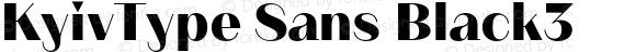 KyivType Sans Black3