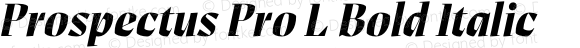 Prospectus Pro L Bold Italic