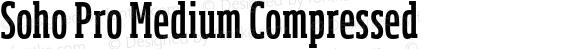 Soho Pro Medium Compressed