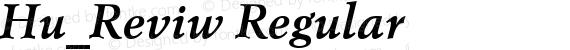 Hu_Reviw Regular preview image