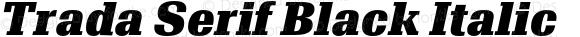 Trada Serif Black Italic