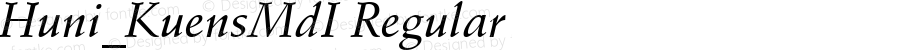 Huni_KuensMdI Regular 1.0,  Rev. 1.65.  1997.06.09