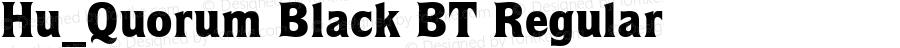 Hu_Quorum Black BT Regular 1997.05.31