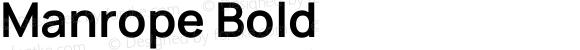 Manrope Bold