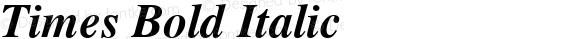Times Bold Italic