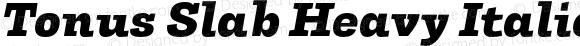 Tonus Slab Heavy Italic