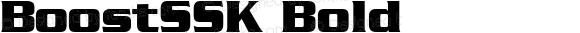 BoostSSK Bold Altsys Metamorphosis:8/25/94