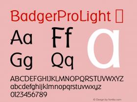 BadgerProLight