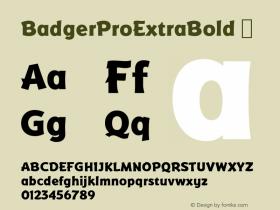 BadgerProExtraBold
