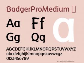 BadgerProMedium