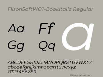 FilsonSoft-BookItalic
