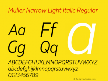 Muller Narrow Light Italic