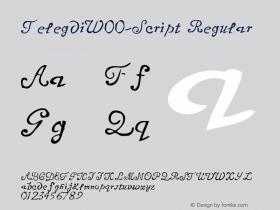 Telegdi-Script