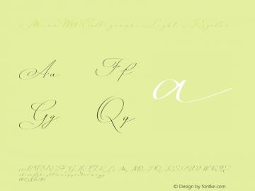Mina-CalligraphicLight