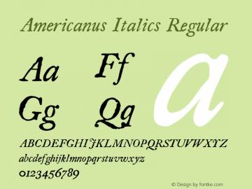 Americanus Italics
