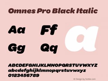 Omnes Pro