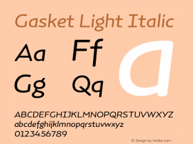 Gasket Light