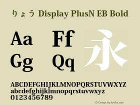 りょう Display PlusN EB