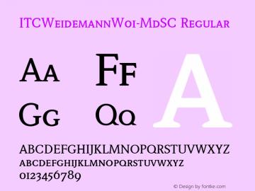 ITCWeidemann-MdSC