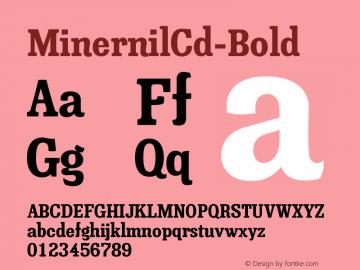 MinernilCd-Bold