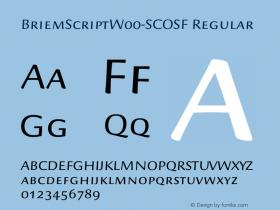 BriemScript-SCOSF
