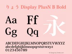 りょう Display PlusN B