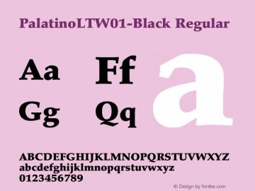 PalatinoLT-Black