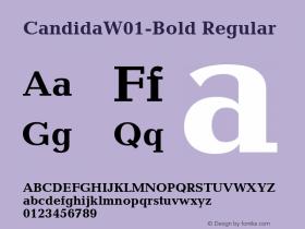 Candida-Bold