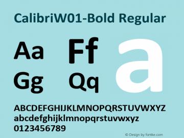 Calibri-Bold