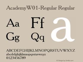 Academy-Regular