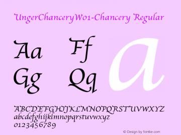 UngerChancery-Chancery