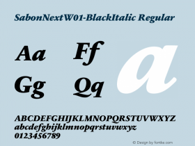 SabonNext-BlackItalic
