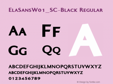 ElaSans_SC-Black