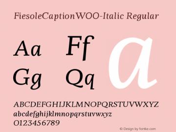 FiesoleCaption-Italic