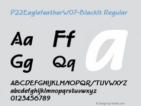 P22Eaglefeather-BlackIt