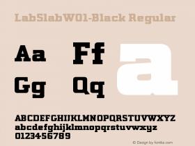LabSlab-Black