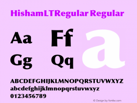 HishamLTRegular