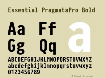 Essential PragmataPro