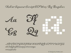 NelioSquareScriptOT-Rg