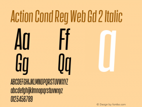 Action Cond Reg Web Gd 2