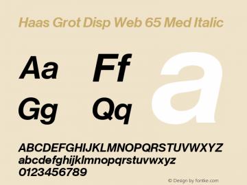 Haas Grot Disp Web 65 Med