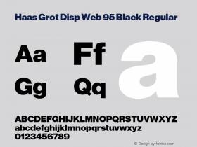 Haas Grot Disp Web 95 Black